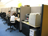 window cubicle workstations